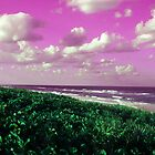 Beach by Sheila McCrea