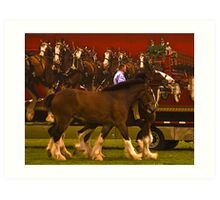 The Clydesdales-take 2 Art Print