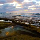 Tide Pool Reflections by Barbara  Brown