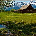~ Teton Mountain Farming ~ by Tim Denny