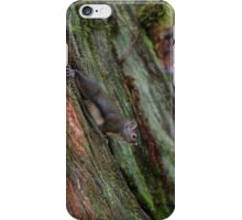 Just a stump nothing to see here iPhone Case/Skin
