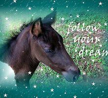Follow Your Dreams by Jan Landers
