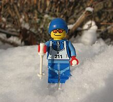 Out for a Ski! by Shauna  Kosoris