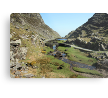 Gap of Dunloe bridge Metal Print