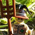 Scarecrow by Shauna  Kosoris