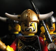 Vikings on the Rampage! by Shauna  Kosoris