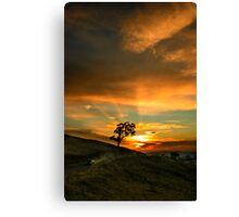 Ute at Sunset Canvas Print