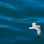 Sea Blues by Denis Molodkin