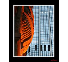 the beauty and the ugliness Photographic Print
