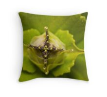 Dogbane Throw Pillow