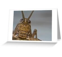 Grasshopper's face Greeting Card
