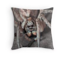 Portrait of a Wolf Spider Throw Pillow