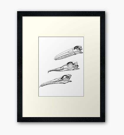 Toothed Birds Framed Print
