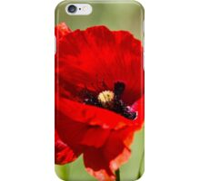 poppies in the field iPhone Case/Skin