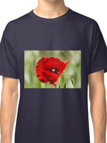 poppies in the field Classic T-Shirt