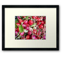 Summertime Radish Framed Print