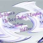 *Banner - The Argument -The Best of Anything & Everything* by EdsMum