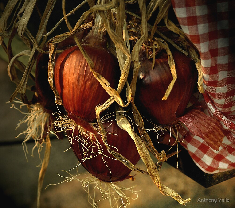 Maltese Red Onions by Anthony Vella
