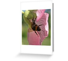 lightness Greeting Card