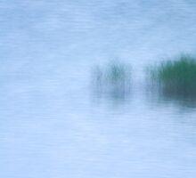 Dream by Walter Quirtmair