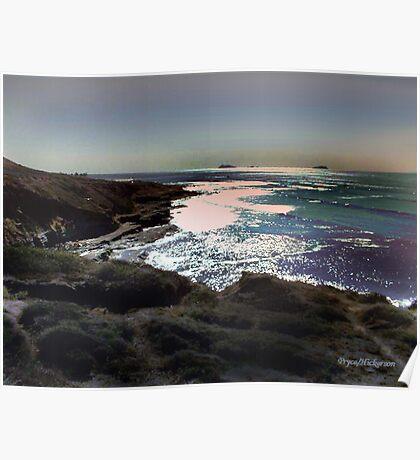 Cabrillo Point Tide Pools Poster