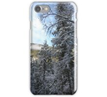 winters wonder iPhone Case/Skin