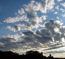 Puffy Clouds by Tammy F