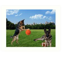 WATCH ME DRIBBLE >>GERMAN SHEPARDS HAVING FUN IN THE PARK Art Print