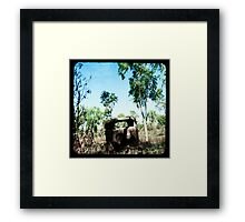 The Old Aussie Ute Framed Print
