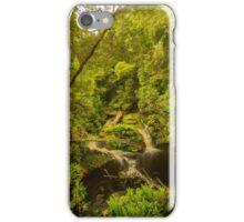 Junction Falls, Hebe River iPhone Case/Skin