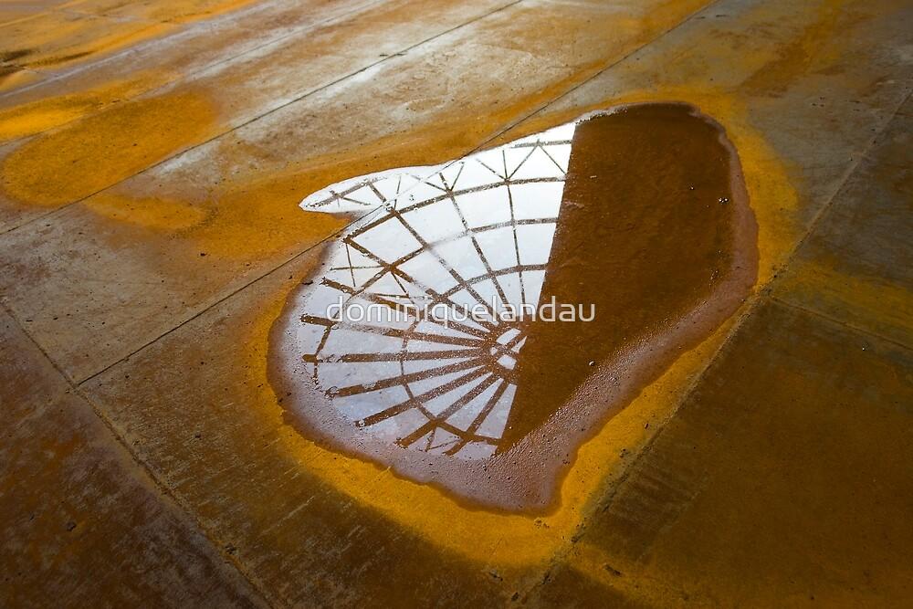 reflection by dominiquelandau