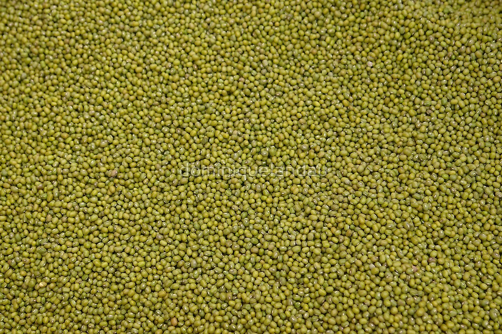 green seeds by dominiquelandau