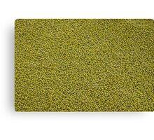 green seeds Canvas Print