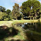 Golf course panorama by georgieboy98
