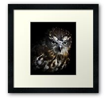 Night Sight Framed Print