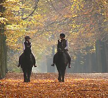 Riding out in the magic of autumn by jchanders