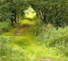 Shaman's Path by John Edwards