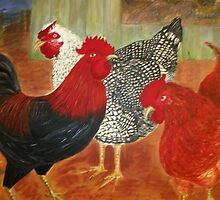 Chook yard by Pam Wilkie