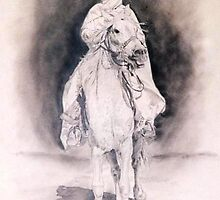 Tunisian Horseman by Joseph Barbara