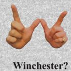 winchester by Muffin1978