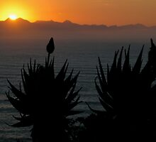 plett sunrise by peterbee