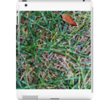 Grassy Earth iPad Case/Skin