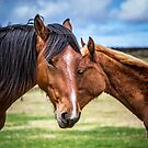 Mother and son by Dave Hare