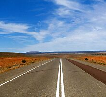 straight ahead by Fran E.