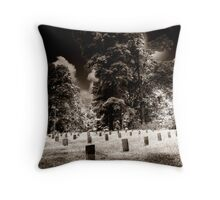 fallen soldiers 8 Throw Pillow