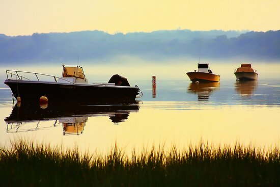 Cove Morning Fog by capecodart