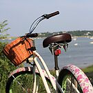 Pink Bike. by Artist Dapixara