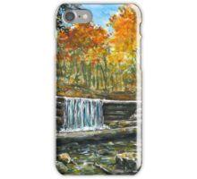 Iargo Springs in Fall iPhone Case/Skin
