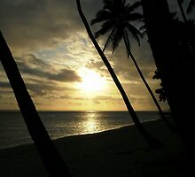 Fiji Sunset 1 by mikequigley
