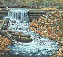 Iargo Springs by Robin (Rob) Pelton